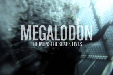 La leyenda del megalodon